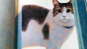 Oscar il gatto custode
